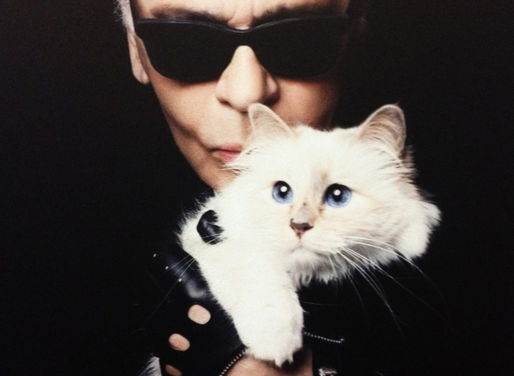 Karl Lagerfeld and his cat, Choupette