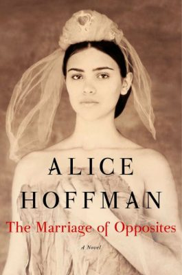 The Marriage of Opposites, Alice Hoffman | Rachel is pushed into an arranged marriage on the exotic and lush island of St. Thomas. She's worried she'll never know true love, but comes to a crossroads and must decide what she's willing to sacrifice for her untried and untested dream.