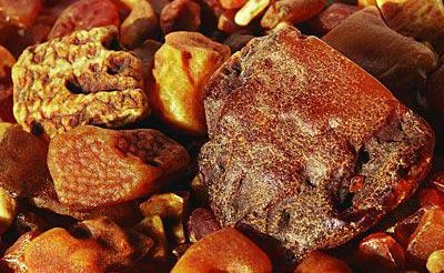 Ingredient Insight: Amber Aromas