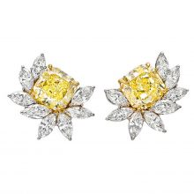 Harry Winston Important Fancy Yellow and White Diamond Floral Cluster Earclips