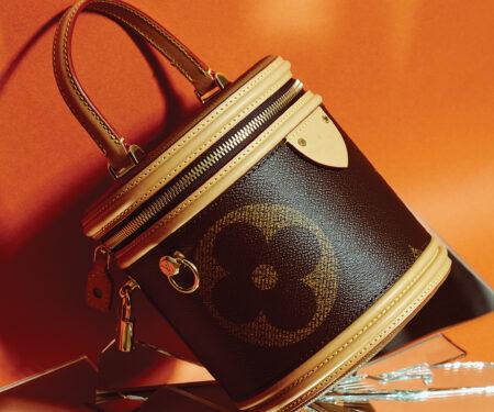 Cannes bag Monogram, Louis Vuitton