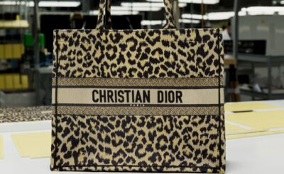 Dior Book Tote Pre-Fall 2021